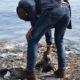 Article : Les déchets polluent le lac Kivu